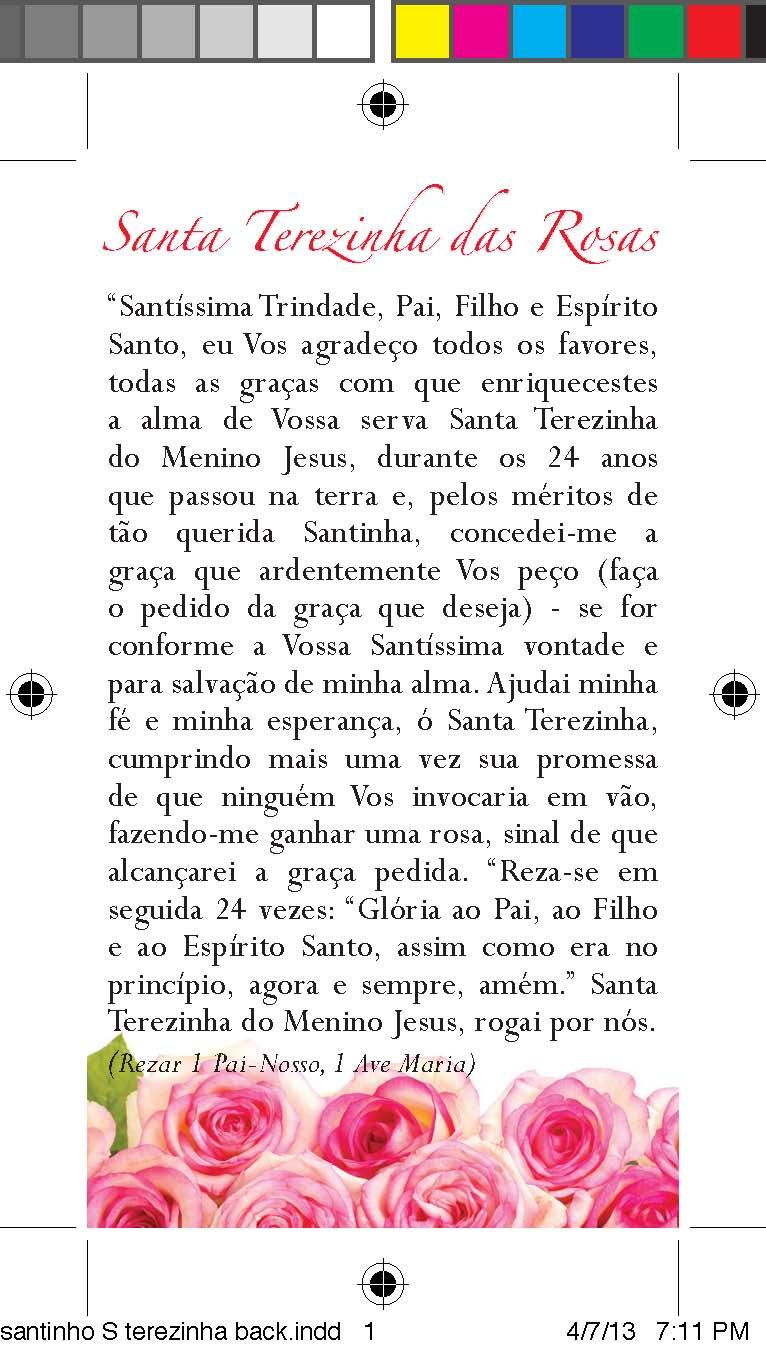 santinho S terezinha back